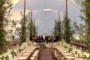 Wedding Reception with 16-piece orchestra