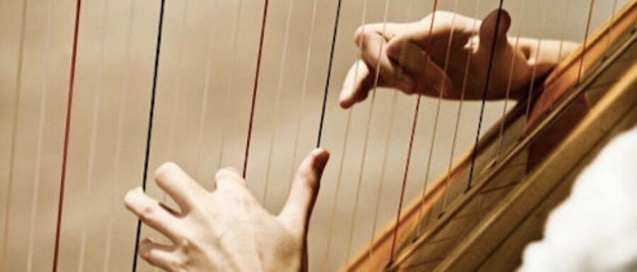 nyc harp player